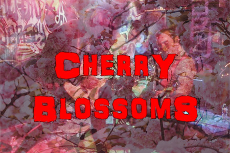 02/27/17 stream & playlist: Music in Your Shoes [with Cherry Blossoms and Kirby]